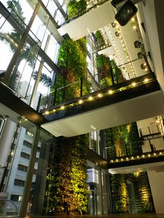 158 Cecil Street Green Office in Singapore by AgFacaDesign