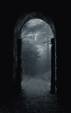 Shadow/ombre Scary/effrayant Nowhere Forest/Foret Mystery Mist Dark/sombre Photo. Dark Forest, Foggy Forest, Magic Forest, Forest Art, Pics Art, Doorway, Belle Photo, White Photography, Creepy Photography