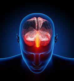 Think Brain!