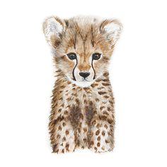 Baby Cheetah Portrait                                                                                                                                                                                 Mais