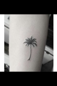 Palm tree tattoo. Im a true California Girl at Heart. My next tattoo!