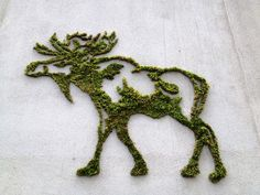 Moss Graffiti - it would be cool to replicate this with some embroidery floss on cloth.