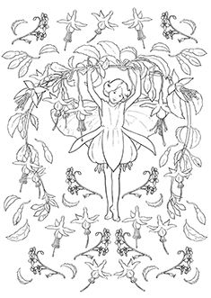 Cicely Mary Barker's Flower Fairies coloring sheets ...