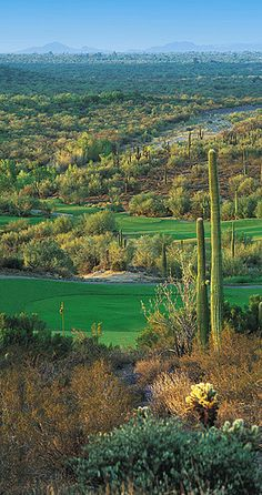 Rancho Manana Golf Club - These Golf Courses are part of the Sonoran Suites Golf Packages & Courses in Scottsdale, Arizona that are available to you, your family, friends or corporate groups. Sonoran Suites offers premier vacation condo rentals and golf vacation packages in Scottsdale, Phoenix, Tucson, San Diego, Palm Springs, Las Vegas and Mesquite!  Call us today at 1-888-786-7848 and let our professional golf staff book the best golf vacation possible! www.sonoransuites.com