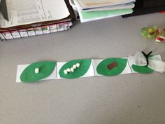 Life cycle of a Butterfly...kindergarten activity