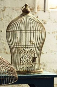 vintage bird cage, in a robin's egg blue color would be amazing to hang above my desk.