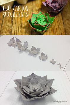 If you're like many people, you love succulents. Unfortunately, succulents don't fare very well indoors. Not anymore. Bring succulents inside with our egg carton succulents DIY!
