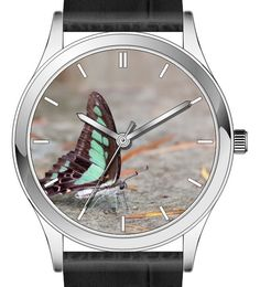 Butterfly wrist watch series - Glassy Bluebottle butterfly