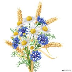 Vector: Wild Chamomile, Cornflowers and Wheat Ears Bunch.