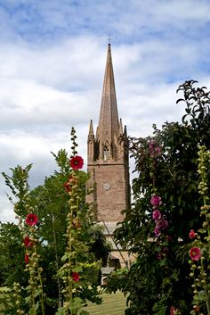 Church of St Peter and St Paul - Weobley, Herefordshire, England (and Hollyhocks)