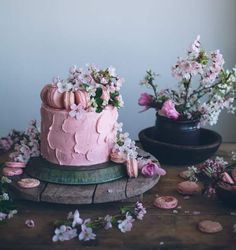 Today we bring you a collection of all the amazing cakes we've featured this past year on Yahoo Food Cake of the Day. They taste good, they look good, and are made by talented bakers from around the world.