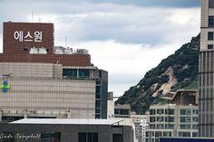 Seoul city come thru - #highrise #innercity #urbancity #urbanview #urbanism #beartribe #honeybear #shoeseouls #hongdae #itaewon #koreatown #seoulcity #seoulite #seoulkorea #seoultravel #explorekorea #namsan #gangnam #worldmark #travelasia #서울 #여행 #홍대 #남산 #강남구 #韩国 #老外 #大学生生活 #学生旅行 #学生