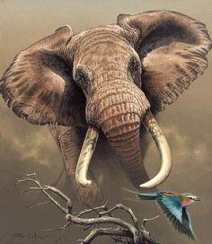 Ilustraciones de animales de Fabrizio Caforio