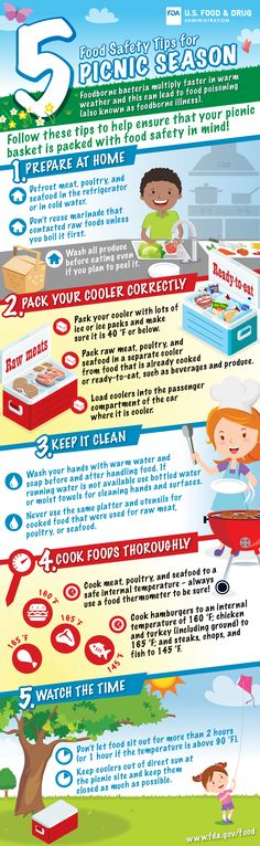 5 Food Safety Tips for Picnic Season. Foodborne bacteria multiply faster in warm weather and this can lead to food poisoning (also known as foodborne … Health And Safety, Health And Wellness, Health Tips, Food Safety Tips, Summer Safety, Food Handling, Baby Food Storage, Grilling Tips, Bbq Tips