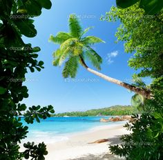 pictures of schelles | Anse Lazio beach on Praslin island in Seychelles | Foto Stock © Iakov ...