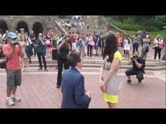 Central Park Flash Mob Proposal