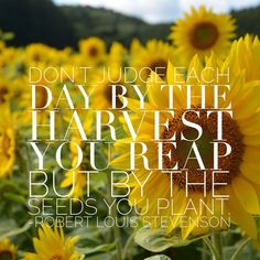 Keep in your mindset in check... #harvest #successseeds #inspire #quote