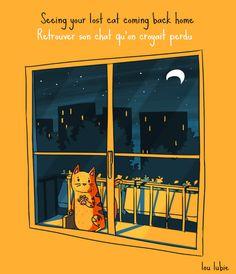 Comme ce chat que l'on retrouve lorsque l'on le croyait perdu, ne perds jamais espoir! Je ne te promets rien mais je garde l'espoir que ce ne sois pas un adieu...