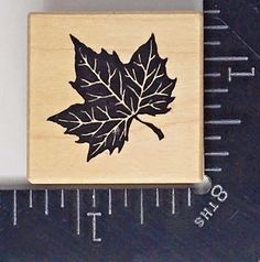PSX Rubber Stamp MAPLE LEAF B-1077 Fall Foliage Autumn Harvest NEW! #B109 #PSXDesigns