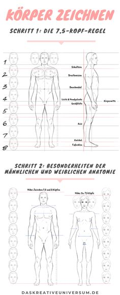 Drawing a body Instructions: Learn to draw a human - Learn how to draw a proportional body using the head rule. Drawing Reference Poses, Drawing Tips, Art Reference, Learn To Draw, How To Draw Hands, Pencil Sketch Drawing, Anatomy Study, Portrait Sketches, Mark Making