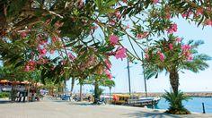 Siden upeat rantabulevardit ovat vertaansa vailla. #Side #Turkki #matkailu #aurinkomatkat