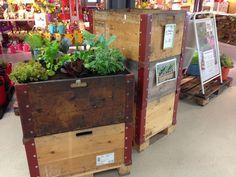Mit SBB Palettrahmen lassen sich einfach Hochbeete erstellen Popup, Urban Gardening, Allotment, Toy Chest, Storage Chest, Liquor Cabinet, Toys, Home Decor, Palette Garden