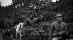 BBC News - In pictures: Rounding-up of wild horses in Galicia, Spain