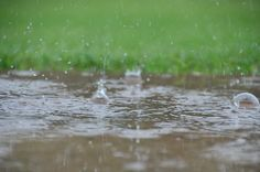 Dancing rain 3 By David Daugherty