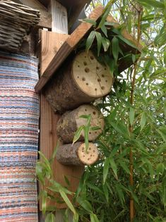 Native bee nests. Fabulous idea and easy to make. Great idea for gift giving.