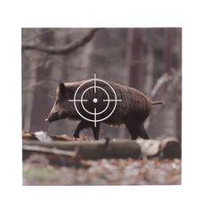10 Zielscheiben / Schießscheiben - Wildsau