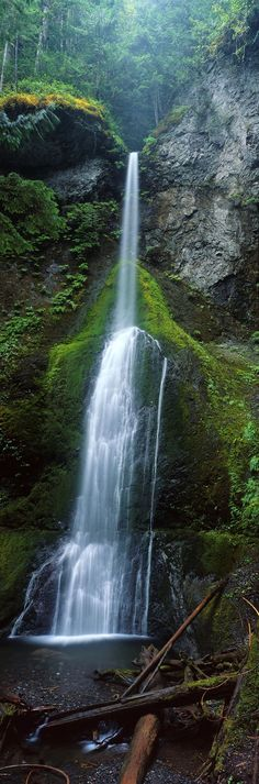 Surrounded by towering old-growth trees and dense carpets of moss and ferns, Olympic National Park's gorgeous Marymere Falls tumbles 90 feet off a steep cliff into a modest plunge pool below.