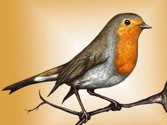 bird artists - Robin bird Art Print by Laura MSS Robin Bird Tattoos, Robin Tattoo, Bird Tattoo Sleeves, Bird Tattoo Back, Robin Drawing, Red Robin Bird, Art Aquarelle, Poppies Tattoo, Mom Tattoos