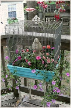An Enchanted Cottage: Another bird cage planter!