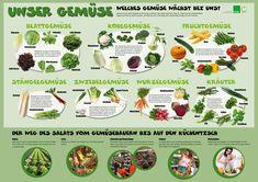 Obst und Gemüse Saisonkalender