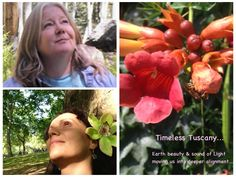 Mystical Tuscany Retreat  NEW MOON Special Pricing ends on FEB 8th, 2016
