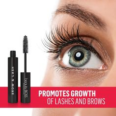 Reveal the real beauty of your eyes. Transform weak, uneven and sparse hairs into healthy-looking beautiful full eyelash and eyebrow growth serum that works. Long Thick Eyelashes, How To Grow Eyelashes, Thicker Eyelashes, Natural Eyelashes, Beatles, Eyebrow Makeup, Eyebrow Tips, Eyebrow Tinting, Makeup Eyebrows