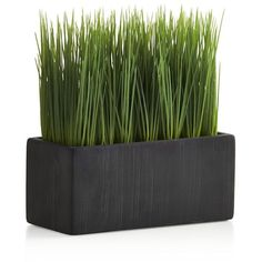 Crate & Barrel Large Potted Artificial Grass found on Polyvore