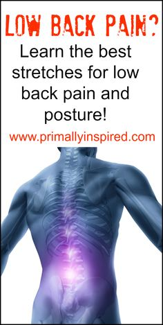 Best Stretches for Low Back Pain and Posture with picture descriptions | https://PrimallyInspired.com - Like my profile and also check my website!