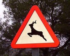 Su componente representativa es la silueta de un ciervo, se asemeja al referente real. A su vez, la señal de peligro, su sentido connotado, es una convención. Por lo tanto la imagen es simbólica.