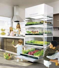 Kitchen Nano Garden by Hyundai – Have you got yours yet?