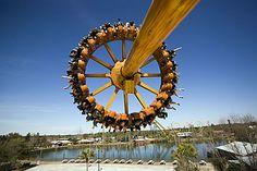 The Rattler at Wild Adventures Theme Park. #wildadventures2013 #sponsored