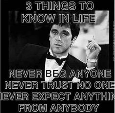Discover and share Never Trust No One Quotes. Explore our collection of motivational and famous quotes by authors you know and love. Wise Quotes, Movie Quotes, Quotes To Live By, Motivational Quotes, Inspirational Quotes, Trust No One Quotes, Conquer Quotes, Famous Quotes, Scarface Quotes