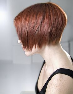 Richard Ward medium red Hairstyles