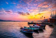 Istanbul, the new inhabitants by *alierturk on deviantART