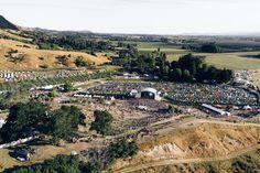 Rhythm & Vines New Zealand Festival 2016, Motion Design, New Zealand, Vines, Dolores Park, Sunrise, World, Places, Travel