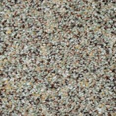 Home Decorators Collection Nevada - Color Grass Valley Texture 12 ft. Carpet - H5010-1805-1200-AB - The Home Depot