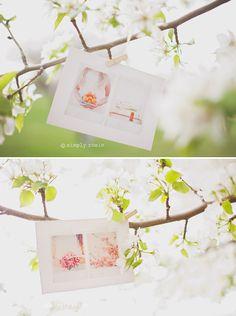 love these postcard designs