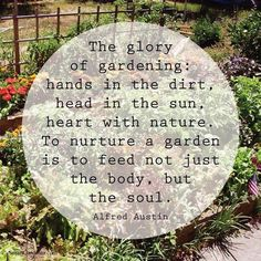 THE GLORY OF GARDENING - Old Moss Woman's Secret Garden shared Organic Gardening's photo on Facebook.