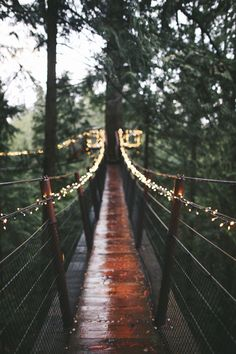 This bridge with twinkling lights is absolutely wonderful! Perfect for the outdoor woods or adventures in the backyard depending on if the yard is Tarzan and Jane style.