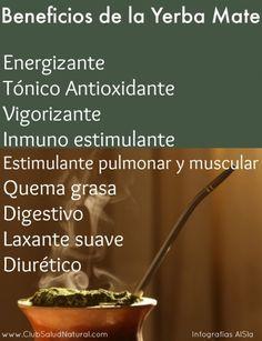 Beneficios y Curiosidades de la Yerba Mate - Club Salud Natural #yerbamate Yerba Mate, Love Mate, Health And Wellness, Health Fitness, Salud Natural, Tea Art, Posca, Health Matters, Medicinal Plants